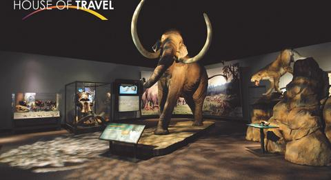 Mammoth House of Travel