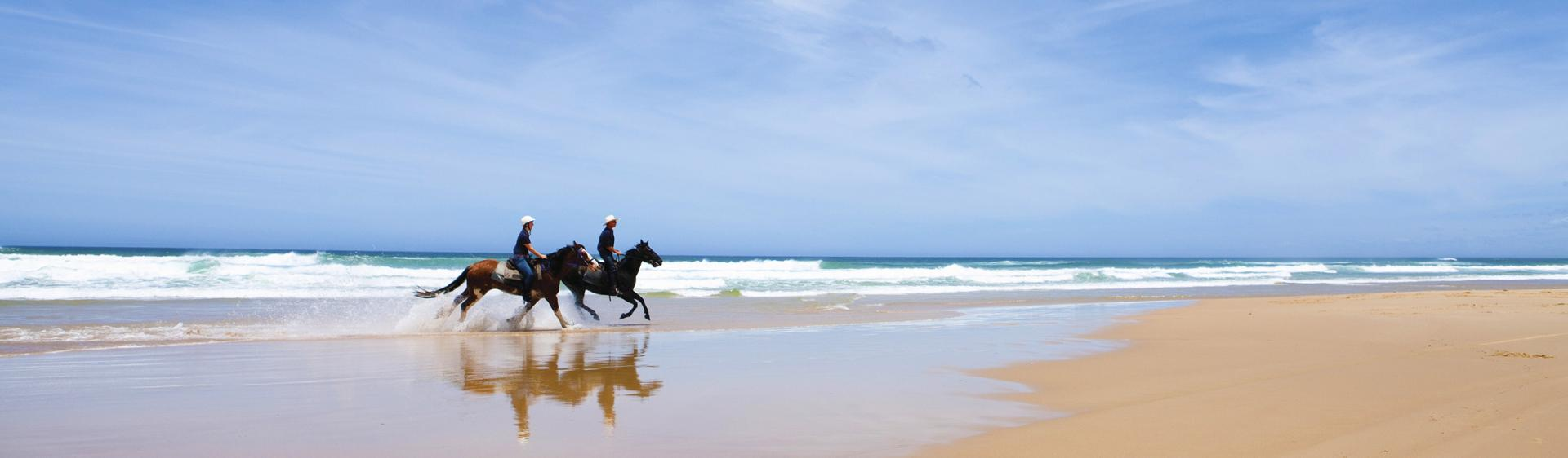 Beach Horse Riding, Port Stephens